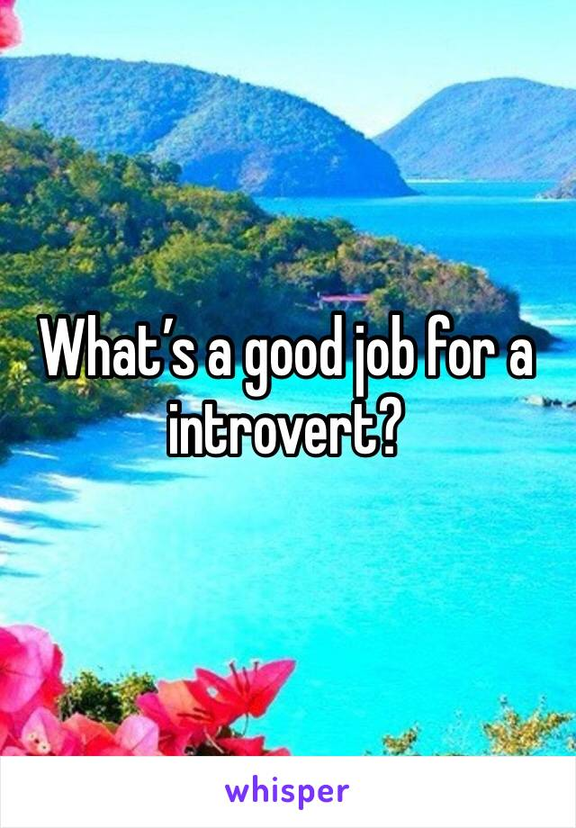 What's a good job for a introvert?