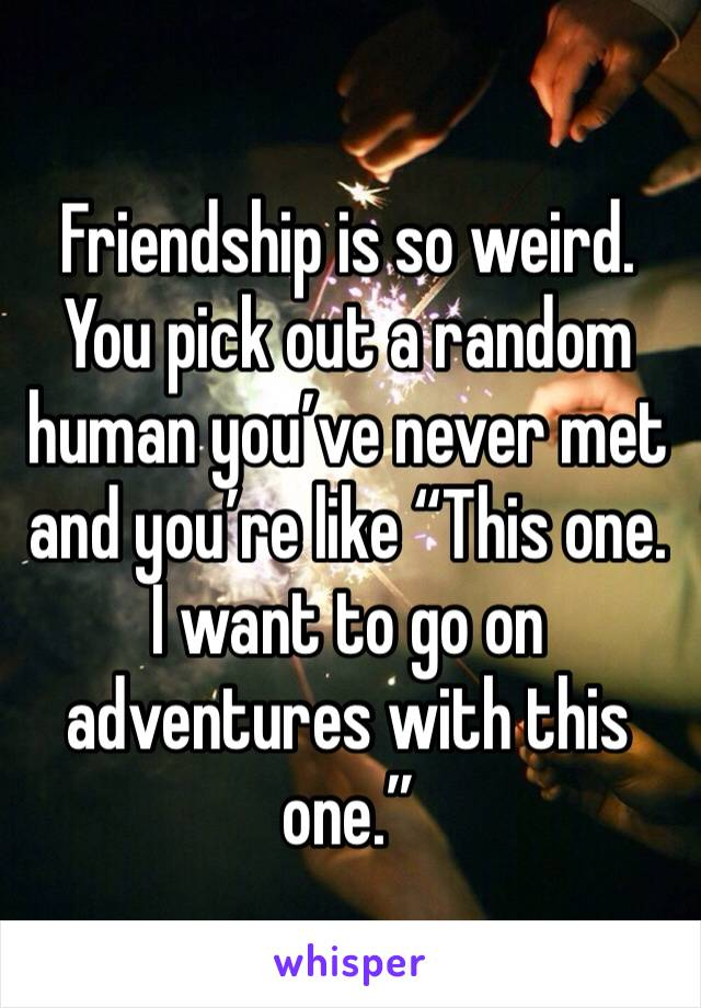 "Friendship is so weird.  You pick out a random human you've never met and you're like ""This one. I want to go on adventures with this one."""