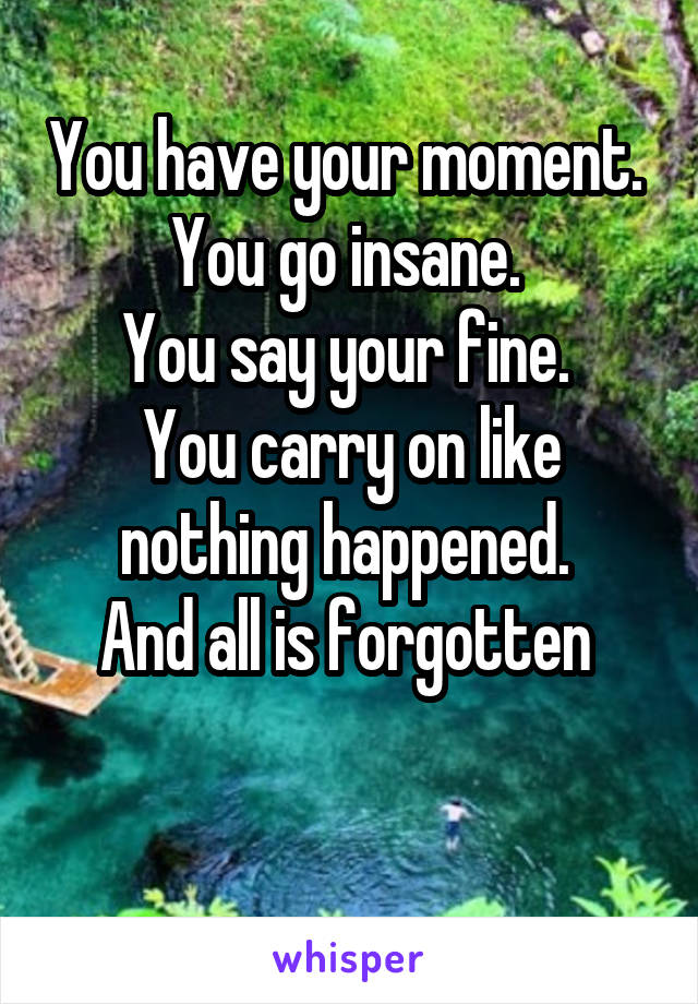 You have your moment.  You go insane.  You say your fine.  You carry on like nothing happened.  And all is forgotten