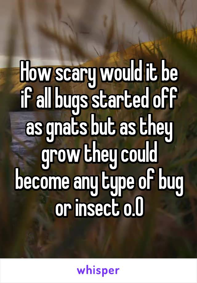 How scary would it be if all bugs started off as gnats but as they grow they could become any type of bug or insect o.O