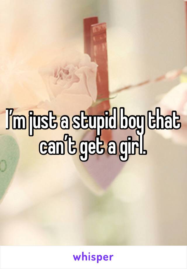I'm just a stupid boy that can't get a girl.