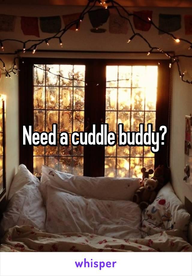 Need a cuddle buddy?