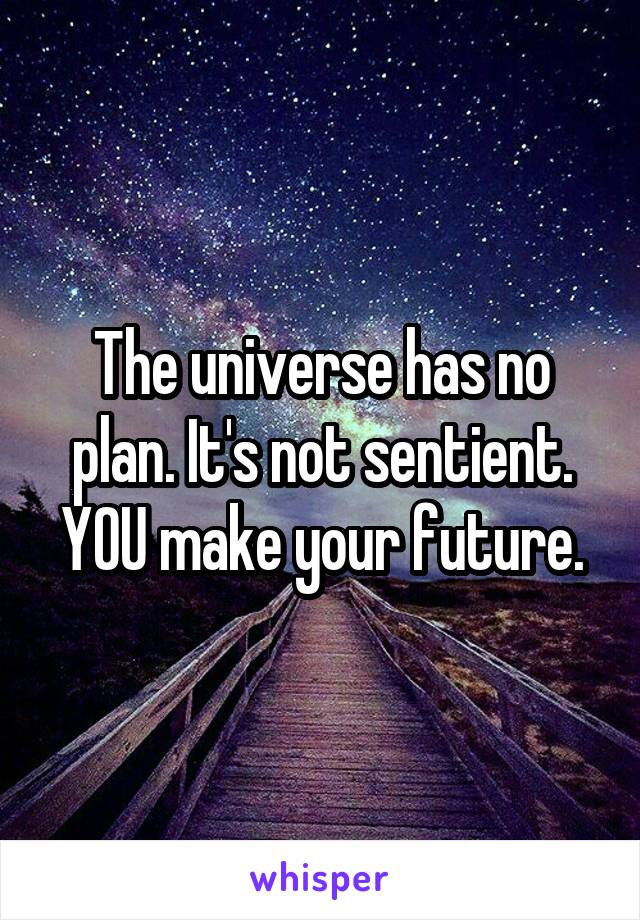 The universe has no plan. It's not sentient. YOU make your future.