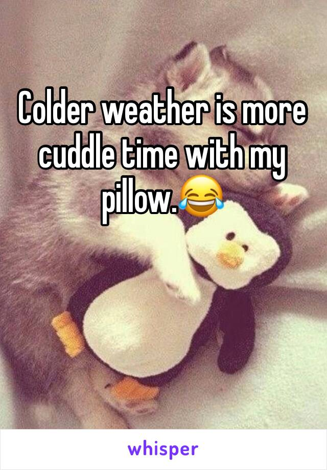 Colder weather is more cuddle time with my pillow.😂