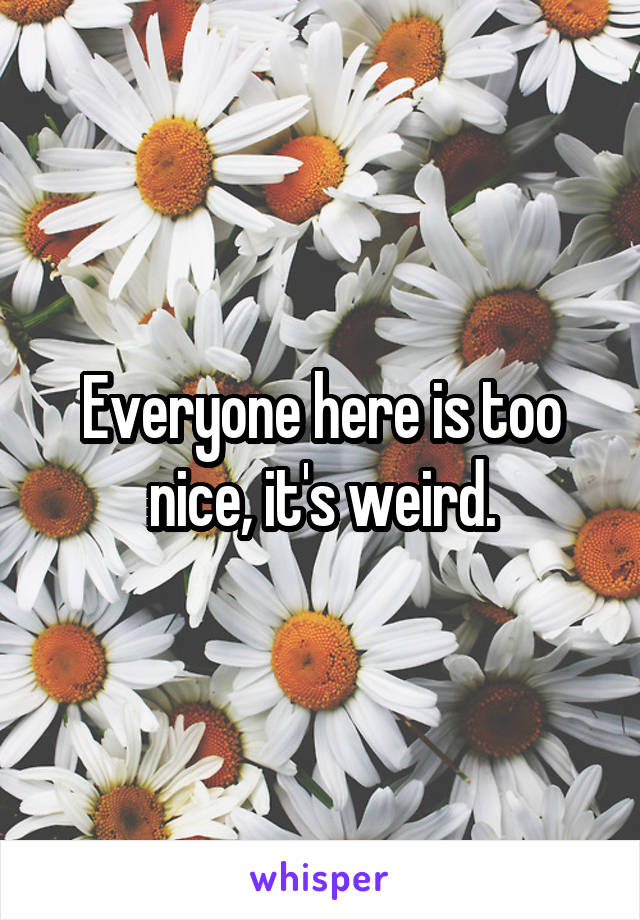 Everyone here is too nice, it's weird.