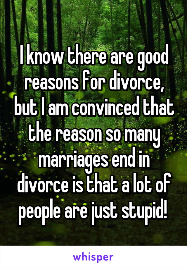 I know there are good reasons for divorce, but I am convinced that the reason so many marriages end in divorce is that a lot of people are just stupid!