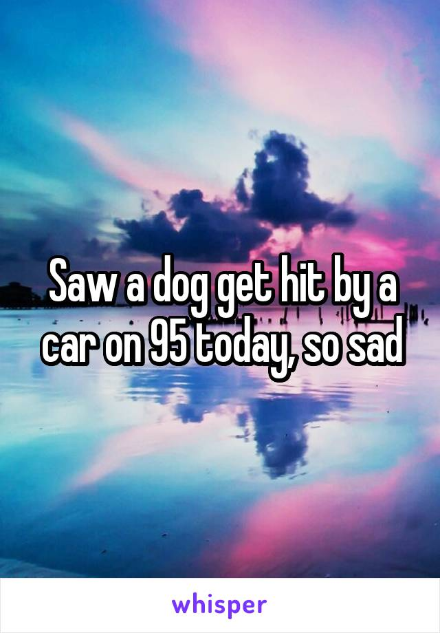 Saw a dog get hit by a car on 95 today, so sad