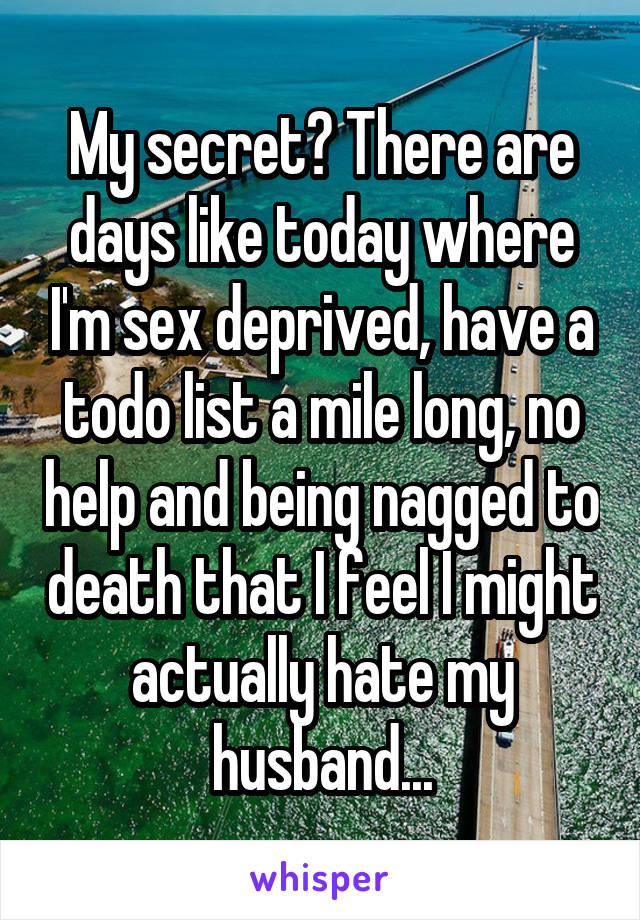 My secret? There are days like today where I'm sex deprived, have a todo list a mile long, no help and being nagged to death that I feel I might actually hate my husband...