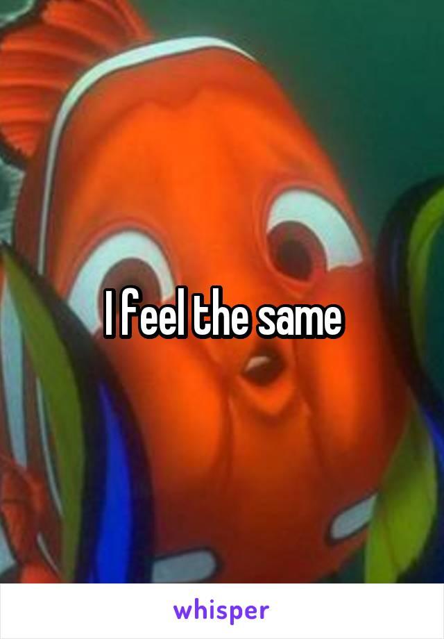 I feel the same