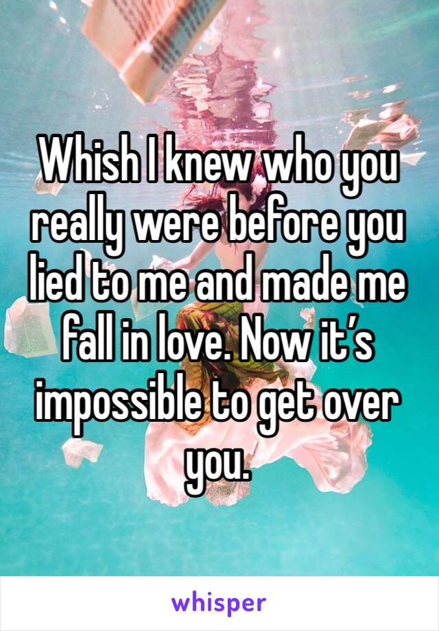 Whish I knew who you really were before you lied to me and made me fall in love. Now it's impossible to get over you.