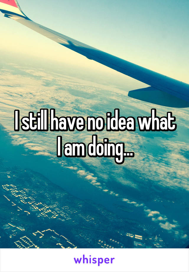 I still have no idea what I am doing...