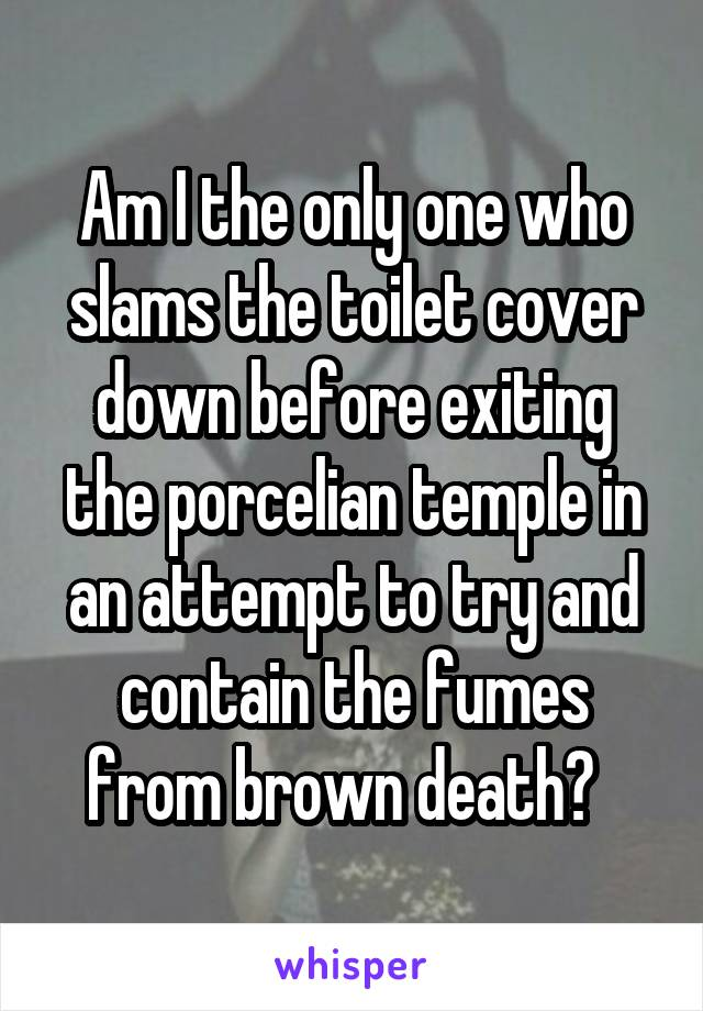 Am I the only one who slams the toilet cover down before exiting the porcelian temple in an attempt to try and contain the fumes from brown death?