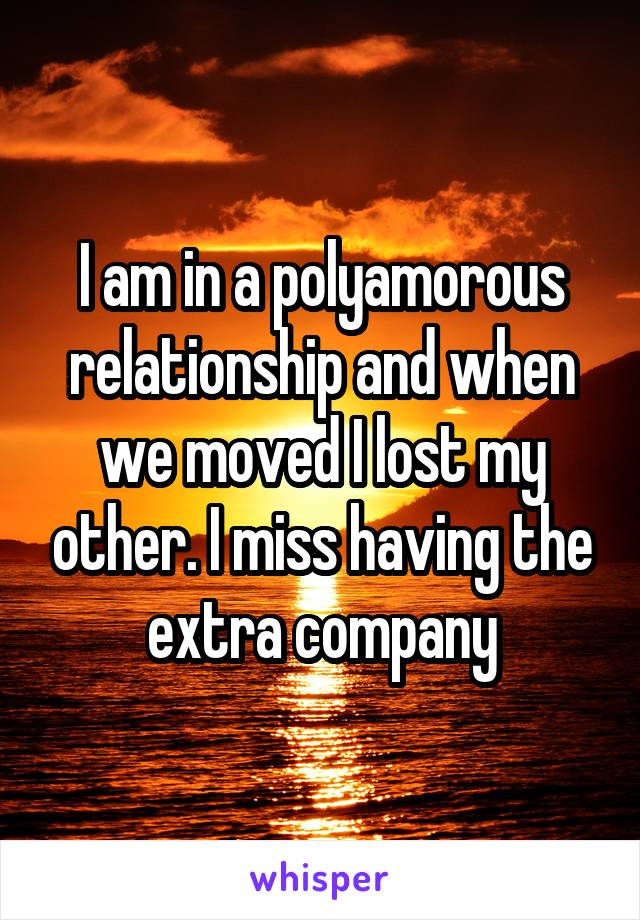 I am in a polyamorous relationship and when we moved I lost my other. I miss having the extra company