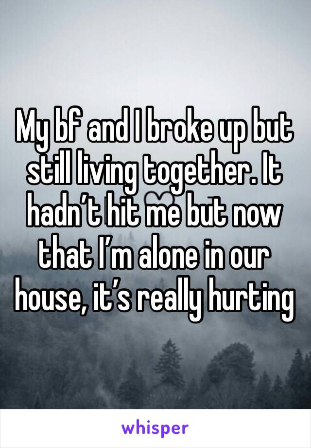 My bf and I broke up but still living together. It hadn't hit me but now that I'm alone in our house, it's really hurting