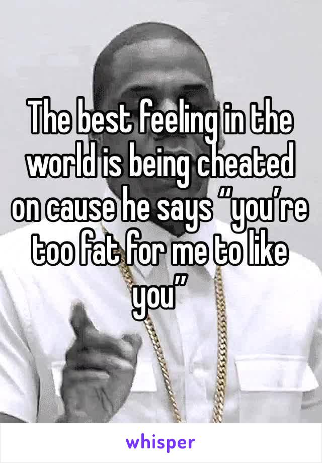 """The best feeling in the world is being cheated on cause he says """"you're too fat for me to like you"""""""