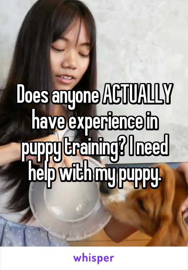 Does anyone ACTUALLY have experience in puppy training? I need help with my puppy.