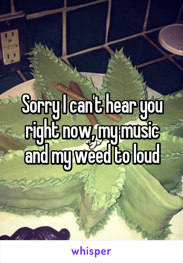Sorry I can't hear you right now, my music and my weed to loud