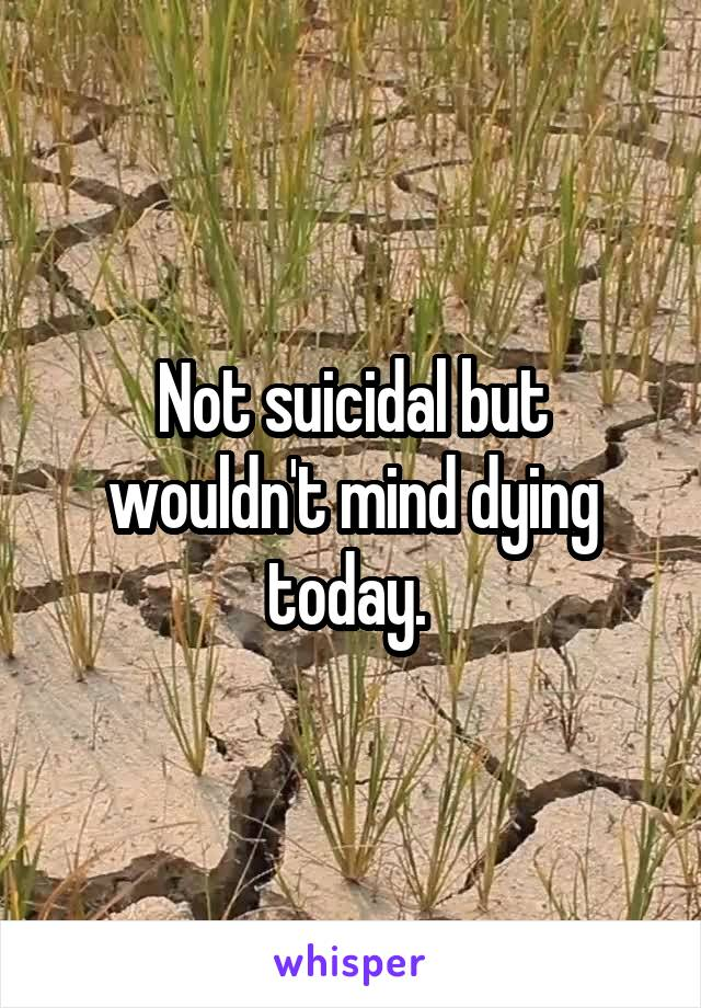 Not suicidal but wouldn't mind dying today.