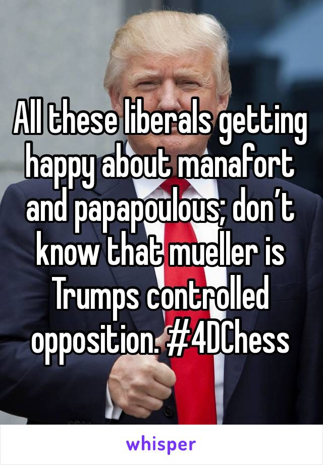 All these liberals getting happy about manafort and papapoulous; don't know that mueller is Trumps controlled opposition. #4DChess