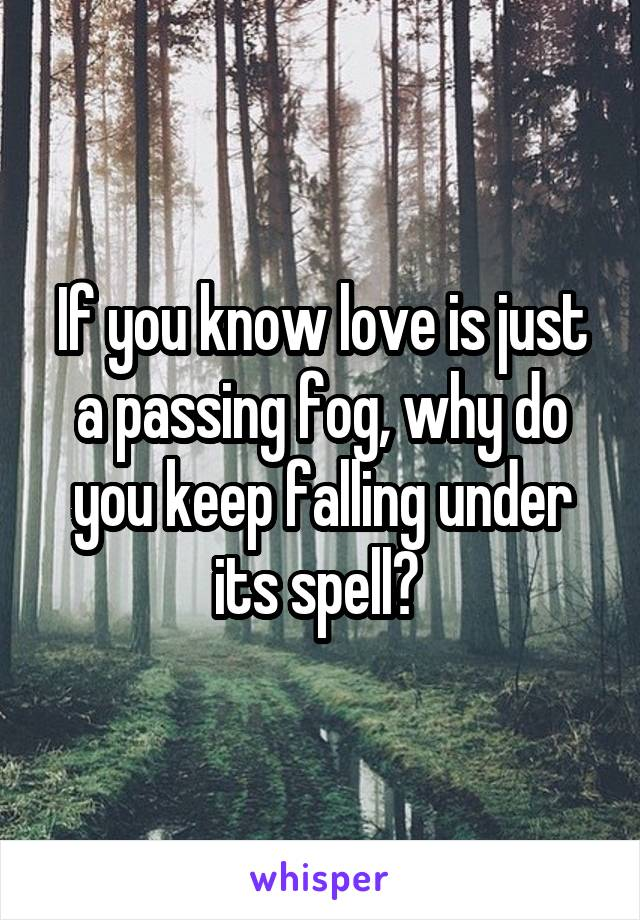 If you know love is just a passing fog, why do you keep falling under its spell?