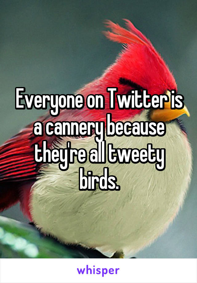 Everyone on Twitter is a cannery because they're all tweety birds.