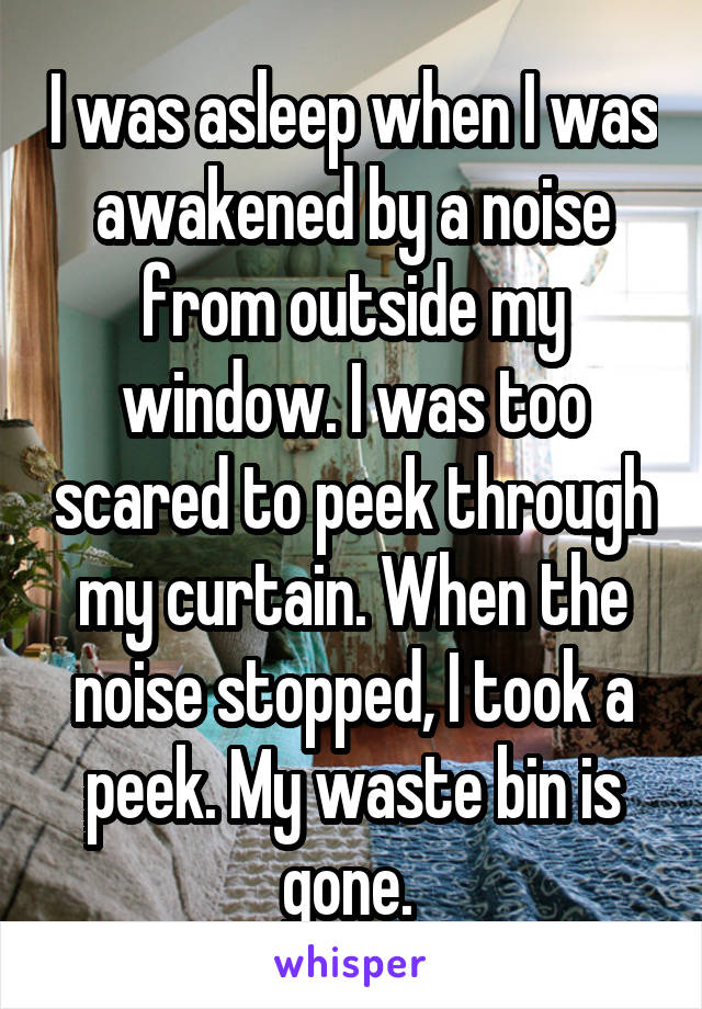 I was asleep when I was awakened by a noise from outside my window. I was too scared to peek through my curtain. When the noise stopped, I took a peek. My waste bin is gone.