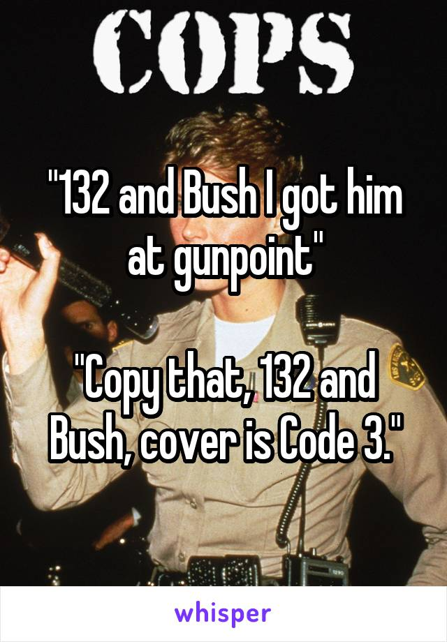 """""""132 and Bush I got him at gunpoint""""  """"Copy that, 132 and Bush, cover is Code 3."""""""