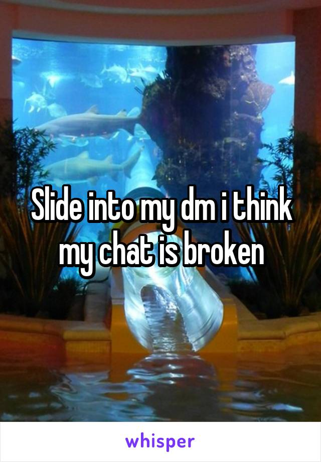 Slide into my dm i think my chat is broken