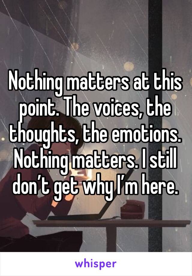 Nothing matters at this point. The voices, the thoughts, the emotions. Nothing matters. I still don't get why I'm here.