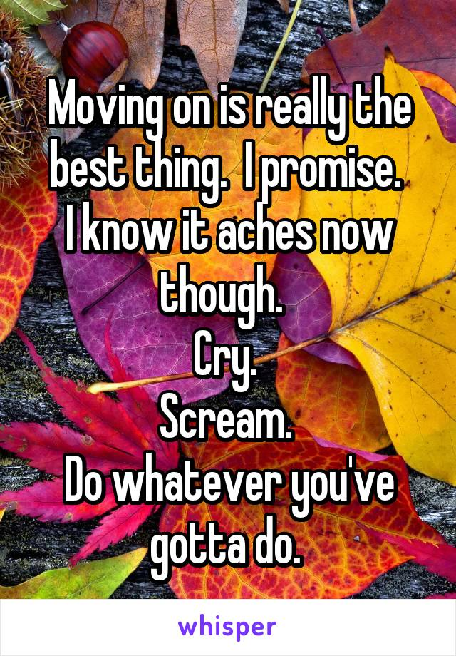 Moving on is really the best thing.  I promise.  I know it aches now though.   Cry.  Scream.  Do whatever you've gotta do.