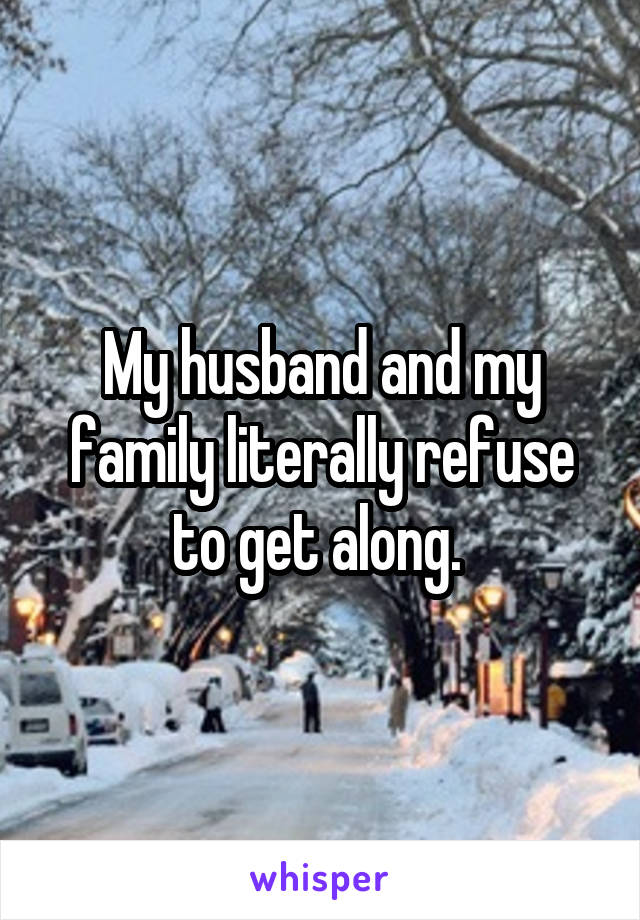 My husband and my family literally refuse to get along.