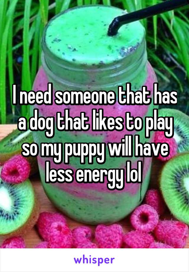 I need someone that has a dog that likes to play so my puppy will have less energy lol