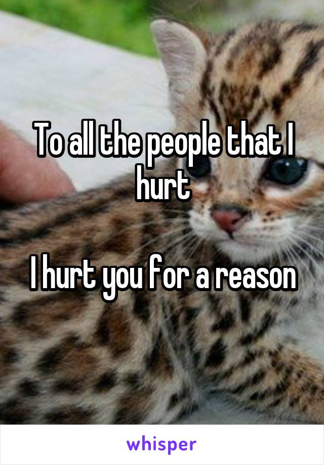 To all the people that I hurt  I hurt you for a reason