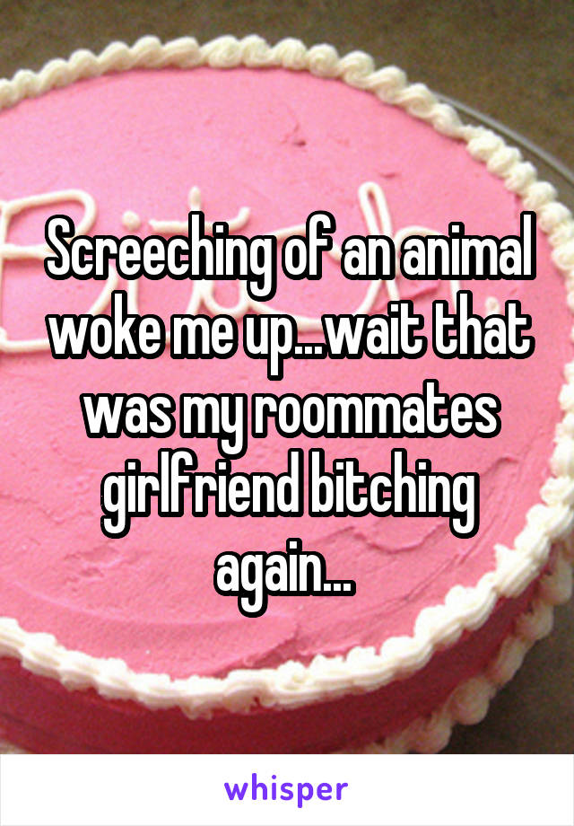 Screeching of an animal woke me up...wait that was my roommates girlfriend bitching again...