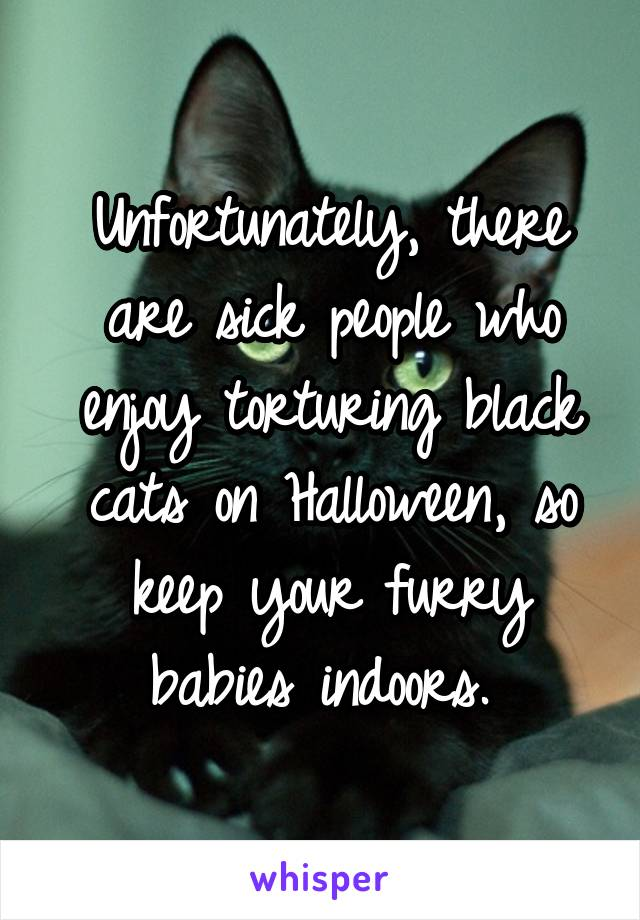 Unfortunately, there are sick people who enjoy torturing black cats on Halloween, so keep your furry babies indoors.
