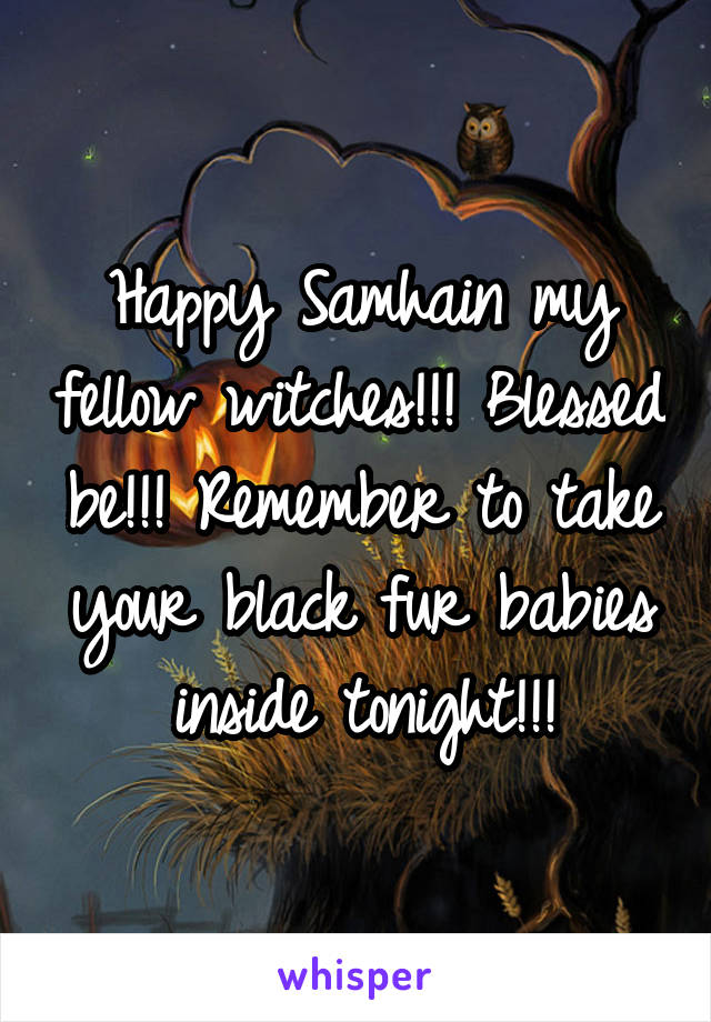 Happy Samhain my fellow witches!!! Blessed be!!! Remember to take your black fur babies inside tonight!!!
