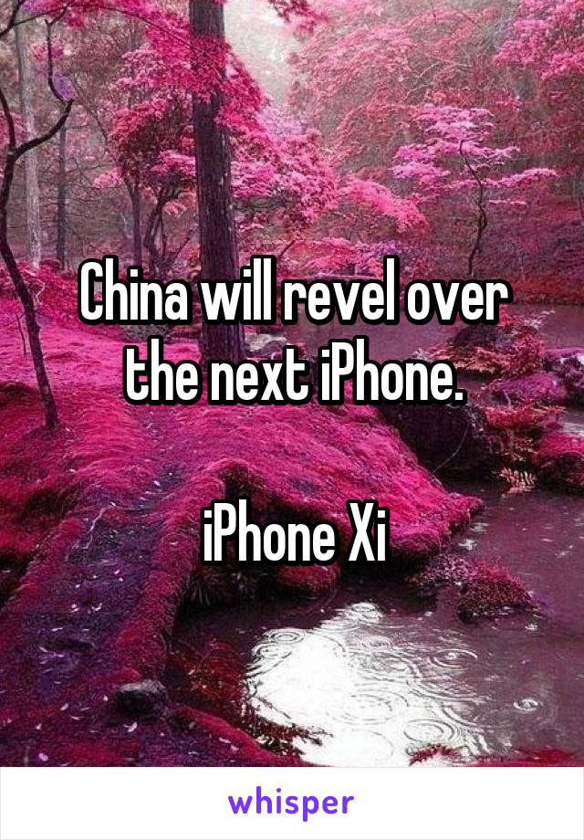 China will revel over the next iPhone.  iPhone Xi