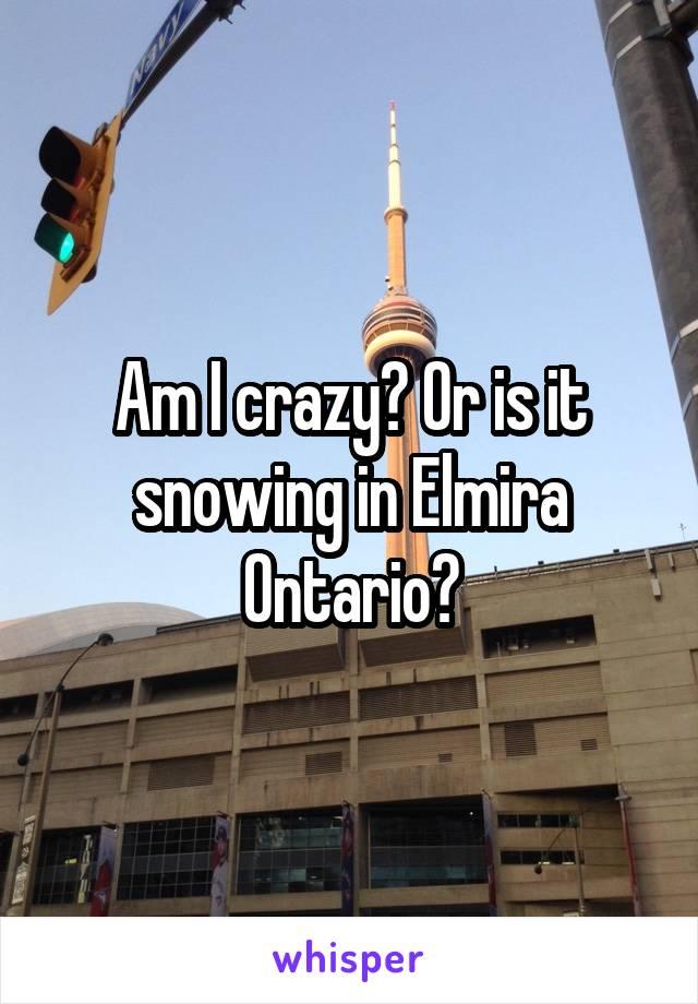 Am I crazy? Or is it snowing in Elmira Ontario?