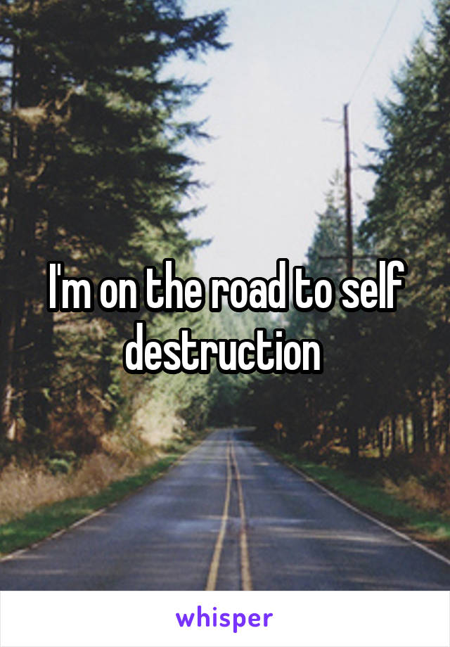 I'm on the road to self destruction