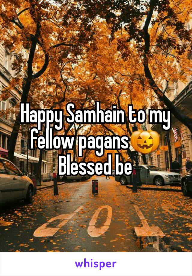 Happy Samhain to my fellow pagans🎃 Blessed be