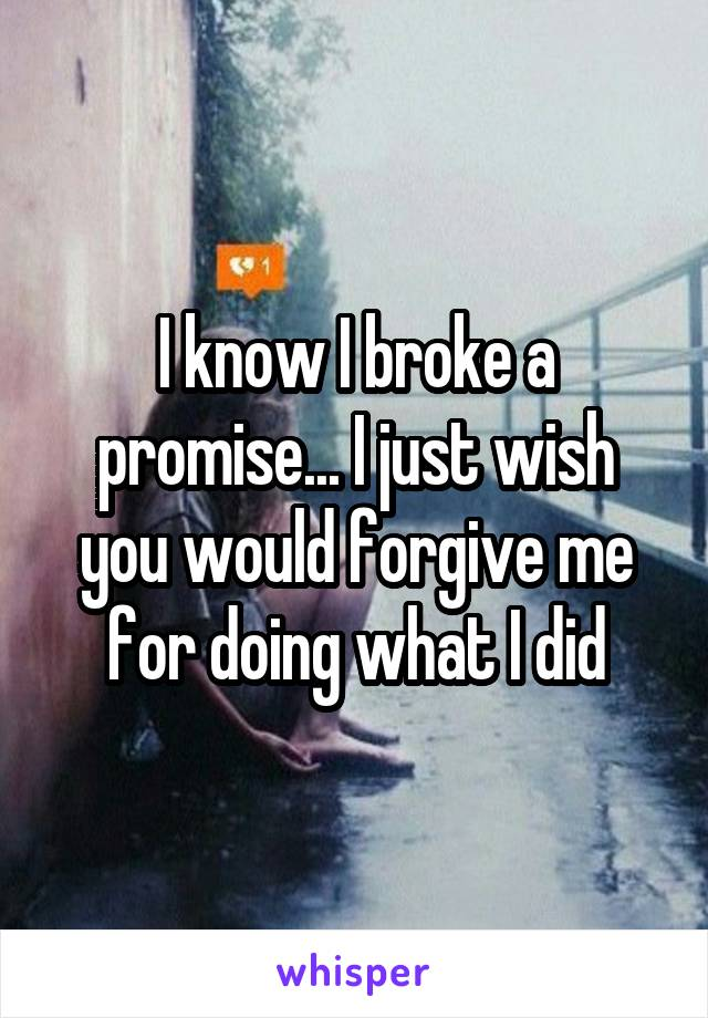 I know I broke a promise... I just wish you would forgive me for doing what I did