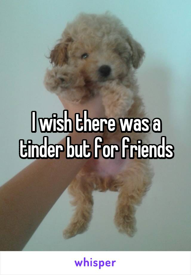 I wish there was a tinder but for friends