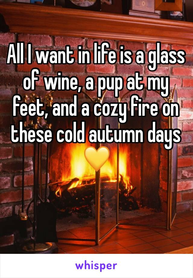All I want in life is a glass of wine, a pup at my feet, and a cozy fire on these cold autumn days  💛