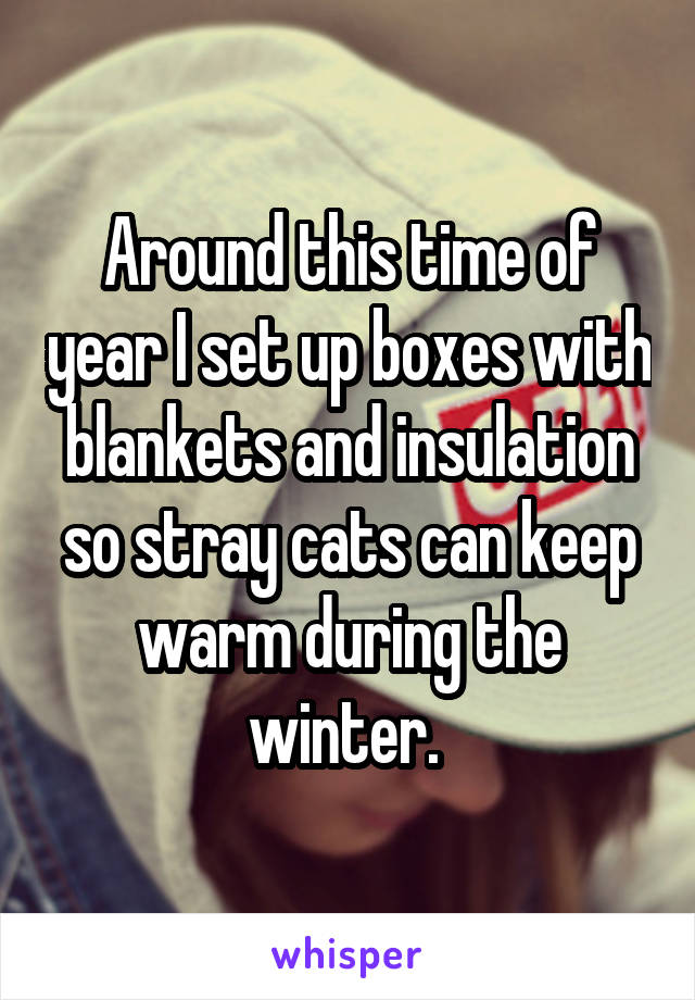 Around this time of year I set up boxes with blankets and insulation so stray cats can keep warm during the winter.