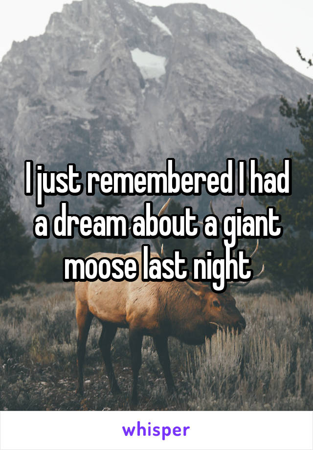 I just remembered I had a dream about a giant moose last night