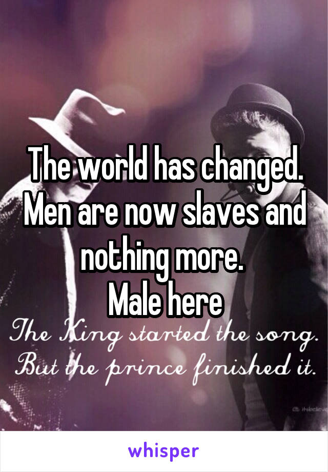 The world has changed. Men are now slaves and nothing more.  Male here