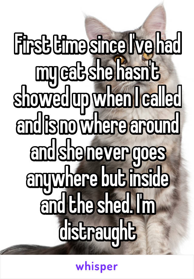 First time since I've had my cat she hasn't showed up when I called and is no where around and she never goes anywhere but inside and the shed. I'm distraught
