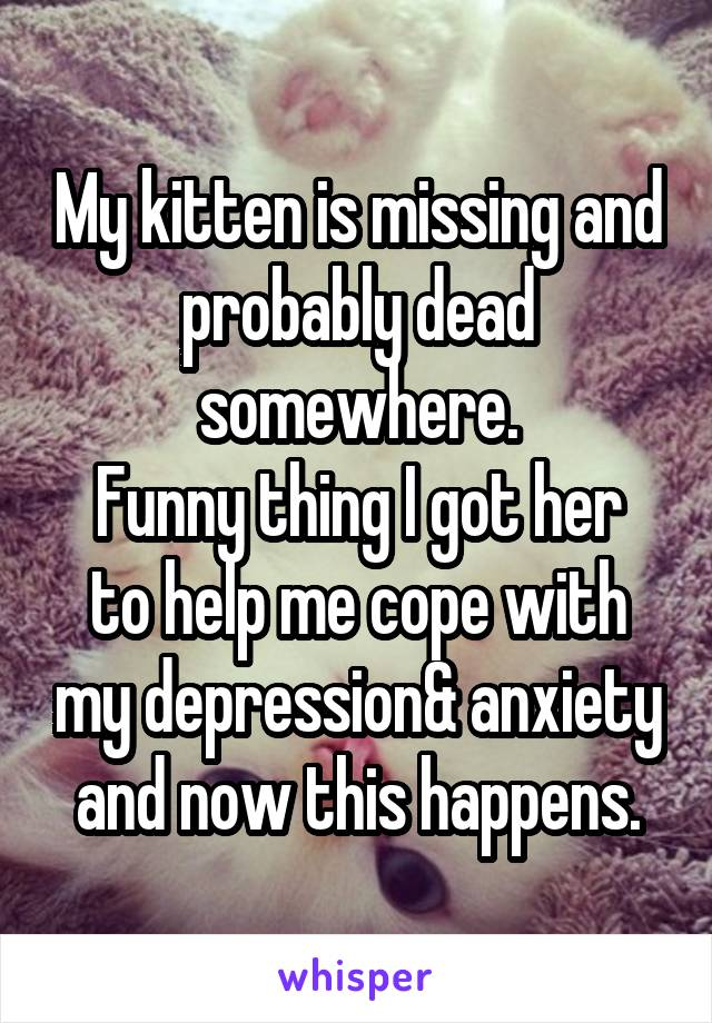 My kitten is missing and probably dead somewhere. Funny thing I got her to help me cope with my depression& anxiety and now this happens.