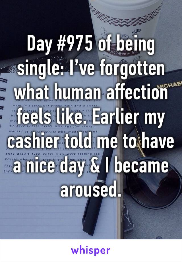 Day #975 of being single: I've forgotten what human affection feels like. Earlier my cashier told me to have a nice day & I became aroused.