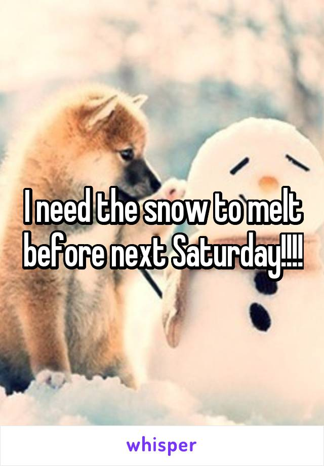 I need the snow to melt before next Saturday!!!!